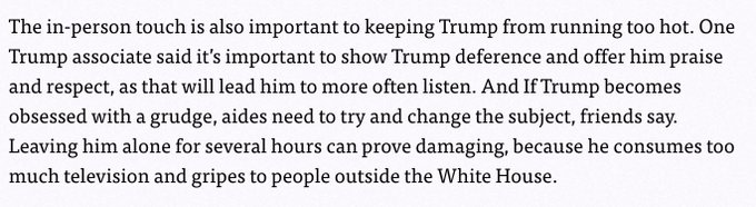 This is written about an adult American president...