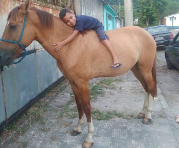 Ladrão devolve cavalo após família divulgar sofrimento de menino