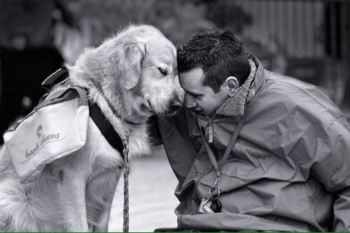 RT @Berti_and_Ernie: Mans best friend will forever be a dog. #dogsarelove https://t.co/Y5Mc4UkftQ