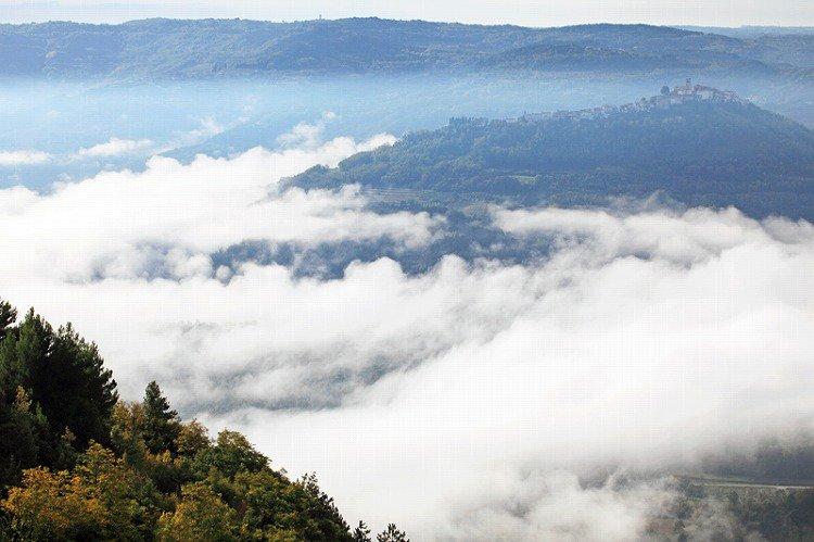 雲の上の町モトヴンは、まるでクロアチアの「天空の城ラピュタ」。モトヴンの眼下に広がる森はトリュフの一大産地。信じられない