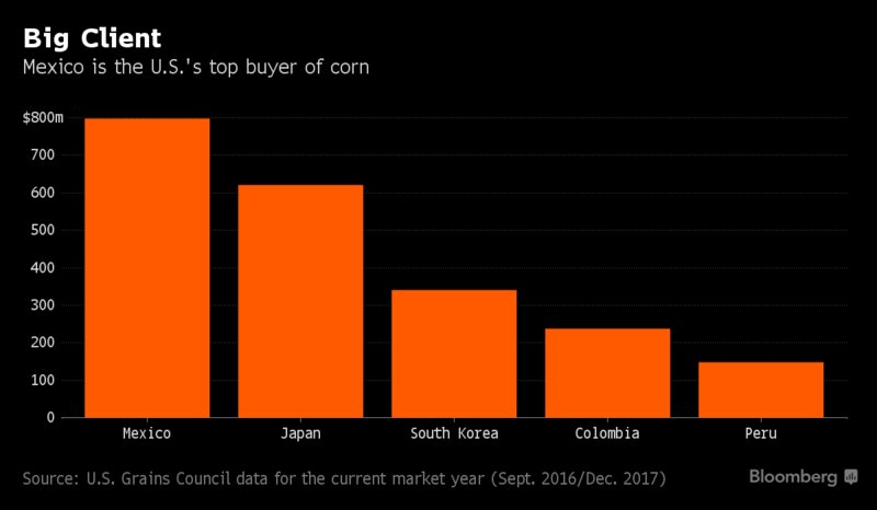 Mexican companies are looking for alternatives to the U.S. for grain imports