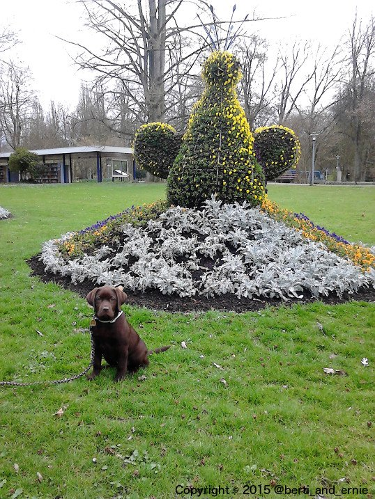 RT @Berti_and_Ernie: I have no sense for gardening sculptures, I just want to do my business.  #puppy #photo https://t.co/0sXTWzYvIN