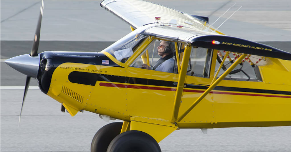 There's now video footage of Harrison Ford's plane mishap and it's terrifying: