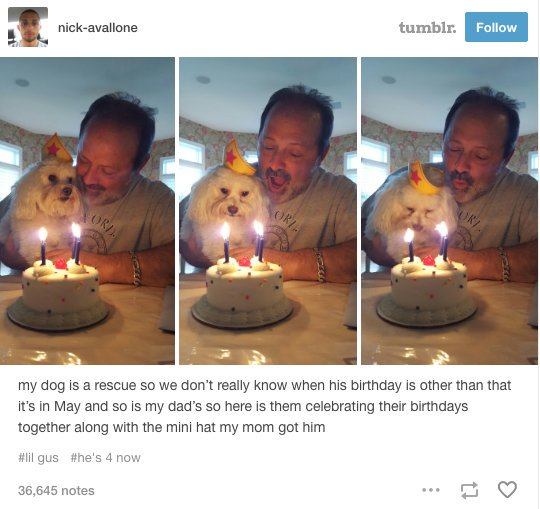 17 Tumblr posts about dads that will make you smile, laugh and maybe cry https://t.co/KTFVuhSvDI