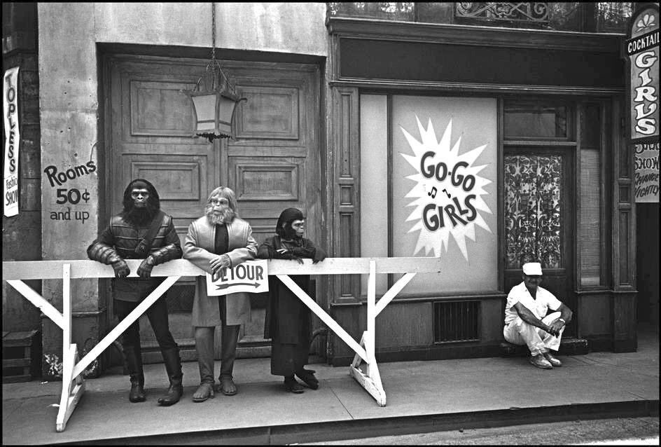 Apes on the set of VALLEY OF THE DOLLS in 1967. https://t.co/BtNBTkDJyV