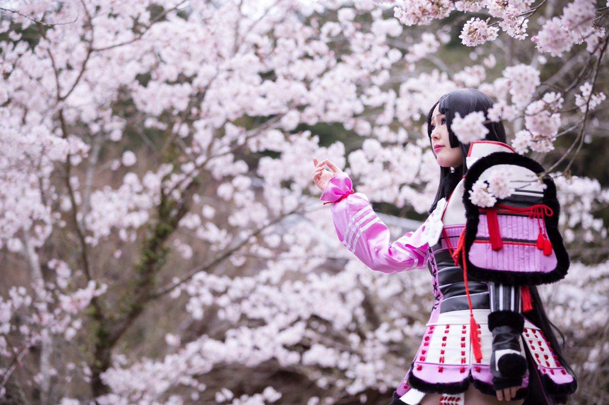 【コス写】戦国BASARA お市『 桜 』今年も桜撮影やりたいな!