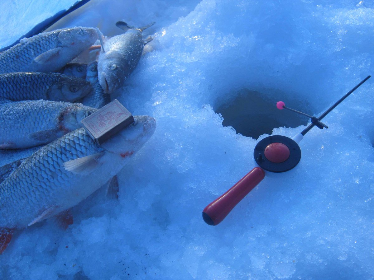 Ловля со льда