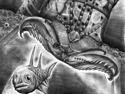 Descubren un gusano monstruoso de hace 400 millones de años https://t.co/IobMOVklH8 https://t.co/6XKM7cMiGo