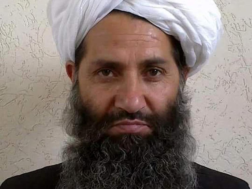 Taliban leader issues statement calling on Afghans to plant more trees