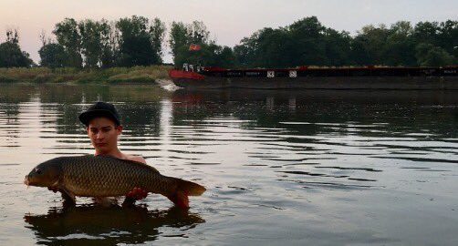 River moments! #carpfishing #summer #nature #<b>Passion</b> #photo #water #carp #hobby #fishing #ang