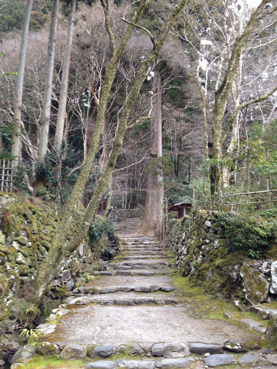 初日(昨日)ハイライト京騒戯画実写特番で矢尾一樹が凄い格好で出て来た事で知られる…