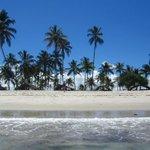 Govt seeks investors in international hotels