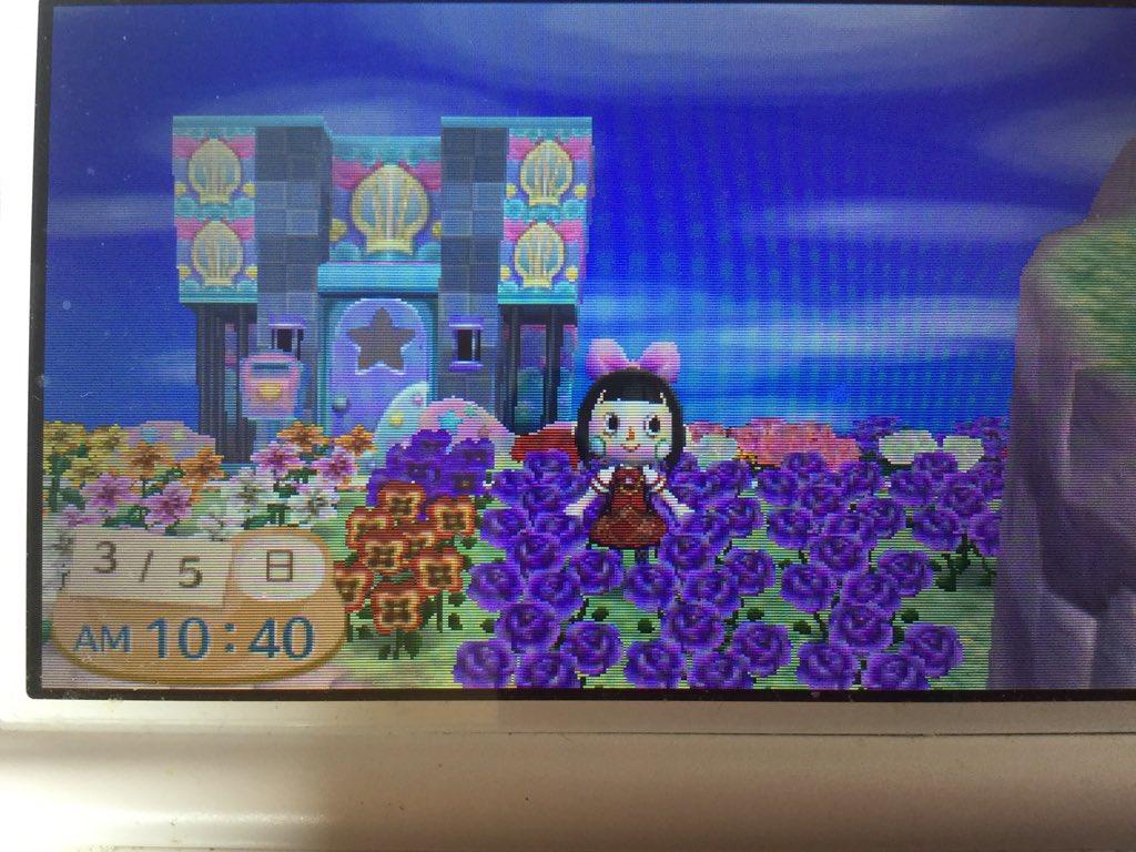 ちびここさん💕💕お待たせしました〜〜💖💖とび森でいちばん好きな紫の薔薇です💓💓とび森でも交配をして作り上げるんです
