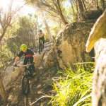 Adventure tourism leading a revival in small Tasmanian town of Derby