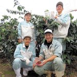 Coffee grown in Kumamoto by team of high school students