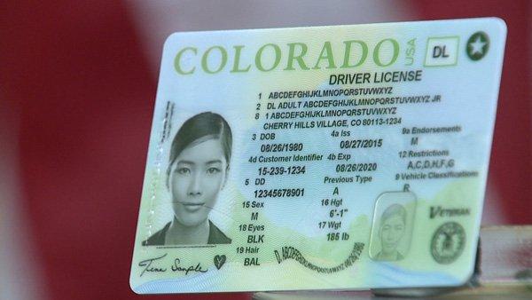 colorado drivers license renewal status