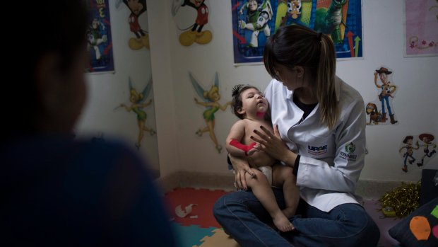 Number of Zika, dengue and chikungunya cases drop in Brazil