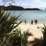 Visitors pay for their footprints in Abel Tasman National Park