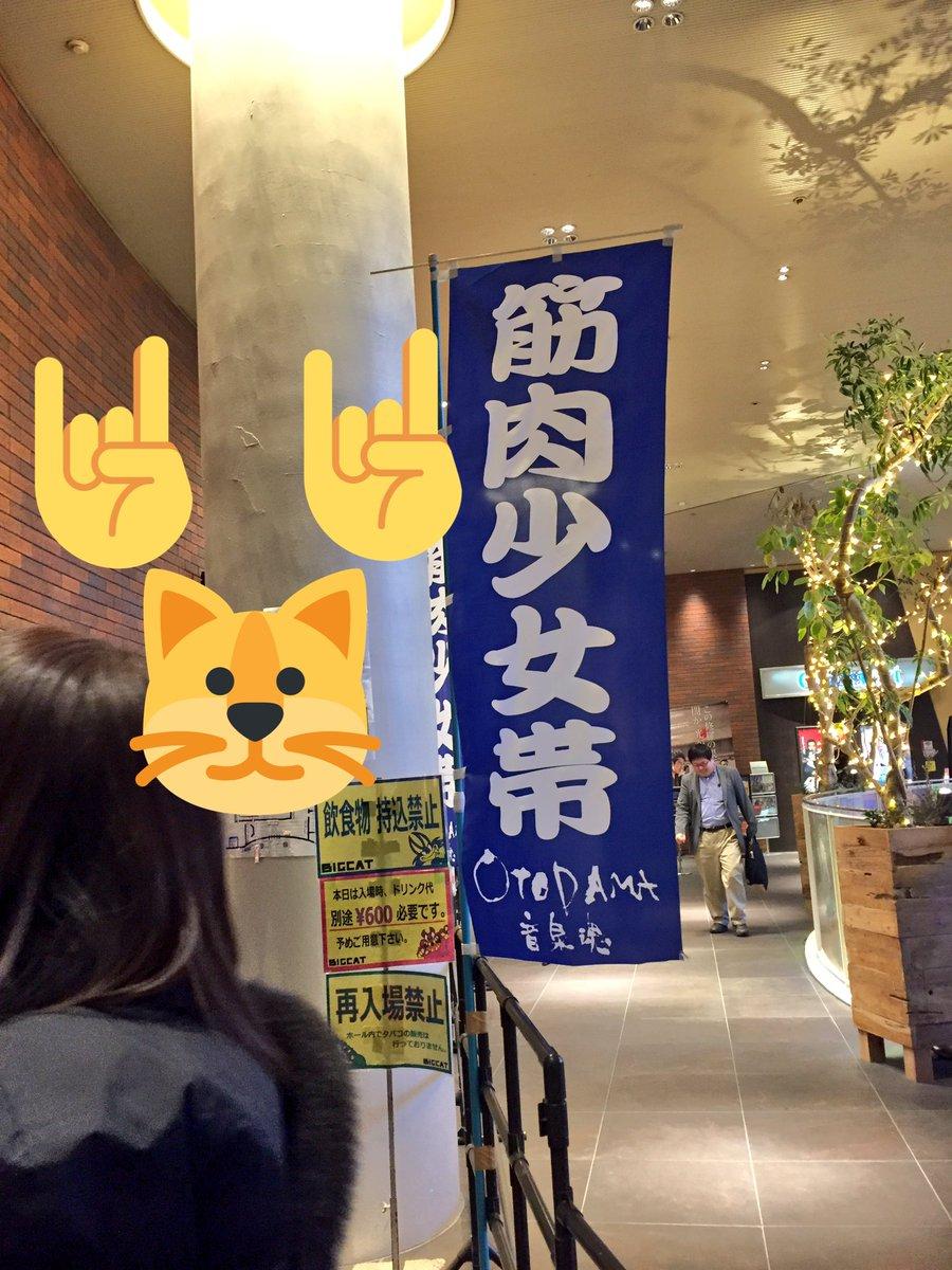 ワートリ民スペースダンディ部デレステ同好会であるところのお茶山さんとなかやんさんと、筋肉少女帯のライブ行って来ました!!