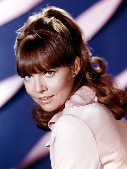 Happy birthday Barbara Feldon!