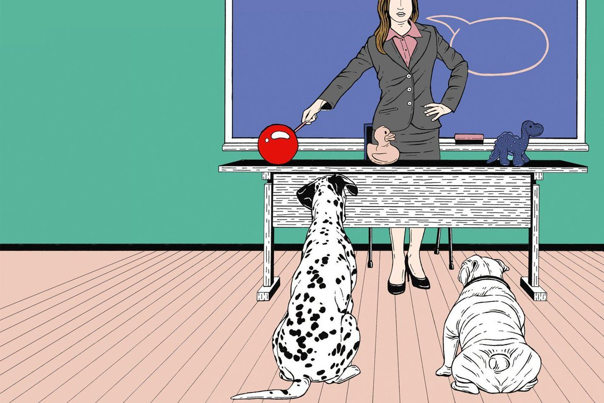 How to teach words to a dog https://t.co/yipEGvJKZ6 #WIREDClassic