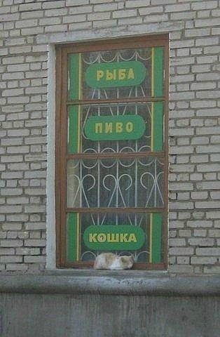 Олька сучка бутово фото 416-392