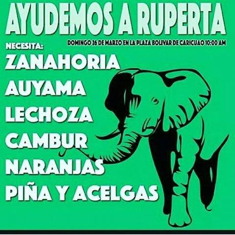Ruperta necesita comida puedes ayudar hoy a las 10 am en la Plaza Bolivar de Caricuao, lleva auyamas, zanahorias,