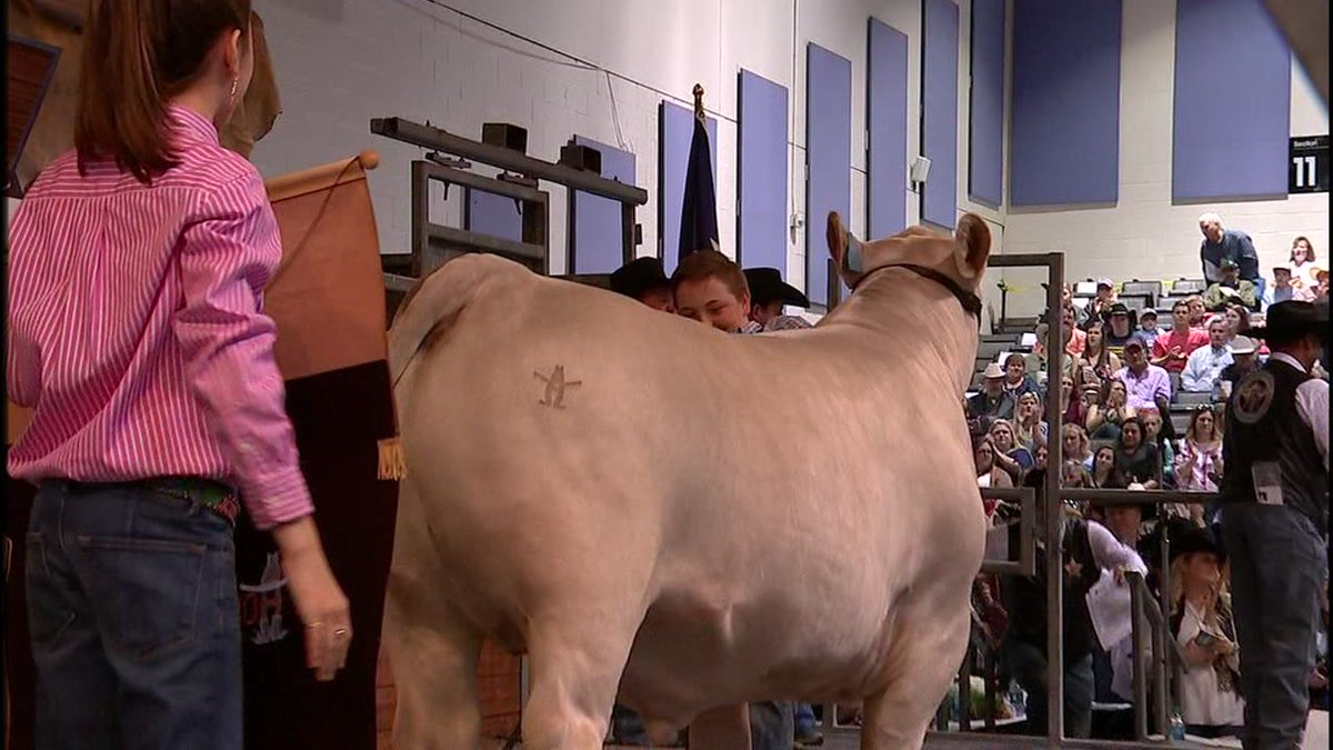 WATCH: Junior Market Steer Auction raises big money for scholarships https://t.co/3z6VPvPmPd