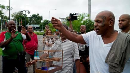 Boxe, Tyson va ko in Suriname, non riesce a fare cantare un uccello