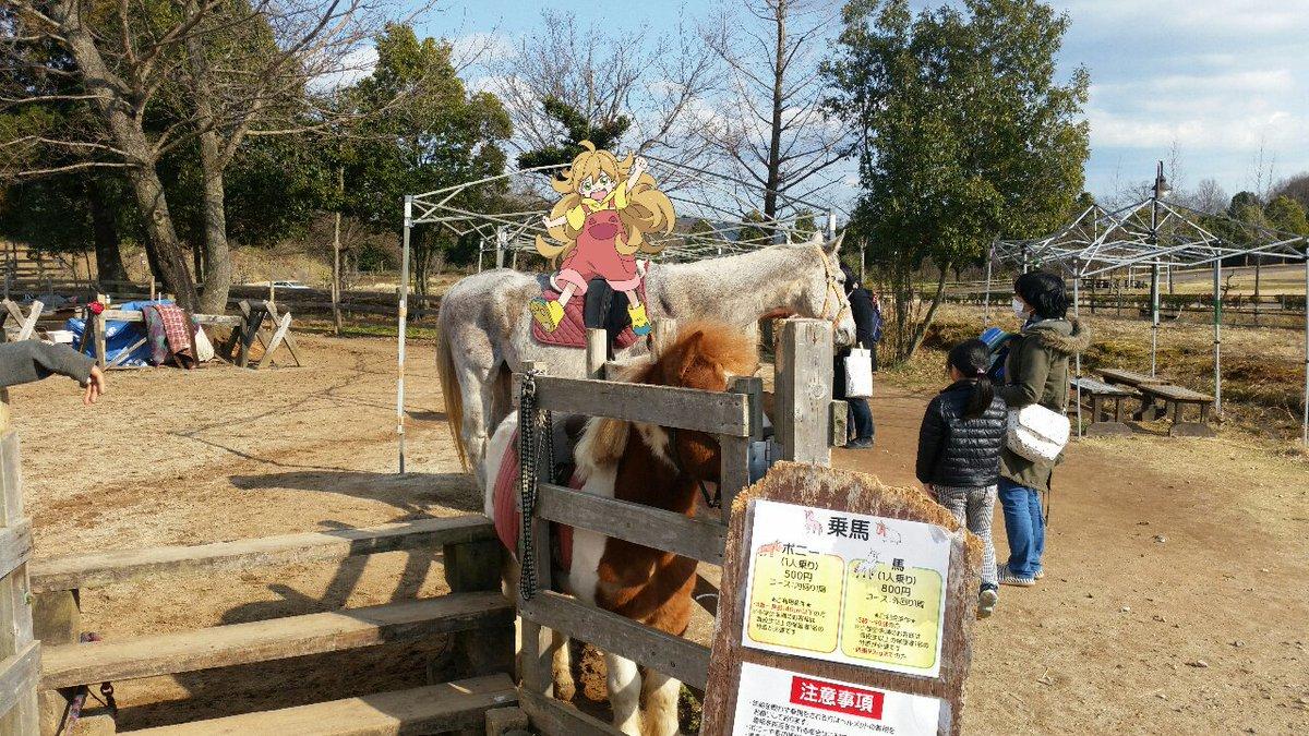 乗馬ができるんだ。:  #甘々と稲妻 #butaimeguri