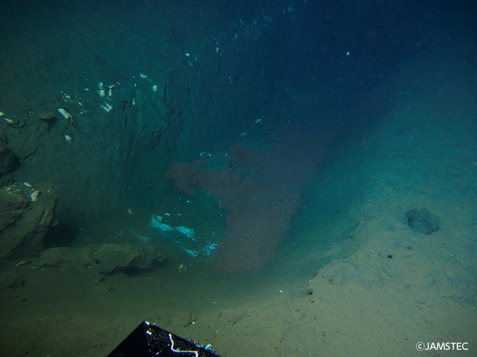【今週の一枚】三陸沖の海底で発見した割れ目 #JAMSTEC #海と地球のフォトギャラリー https://t.co/APq1UkRquY