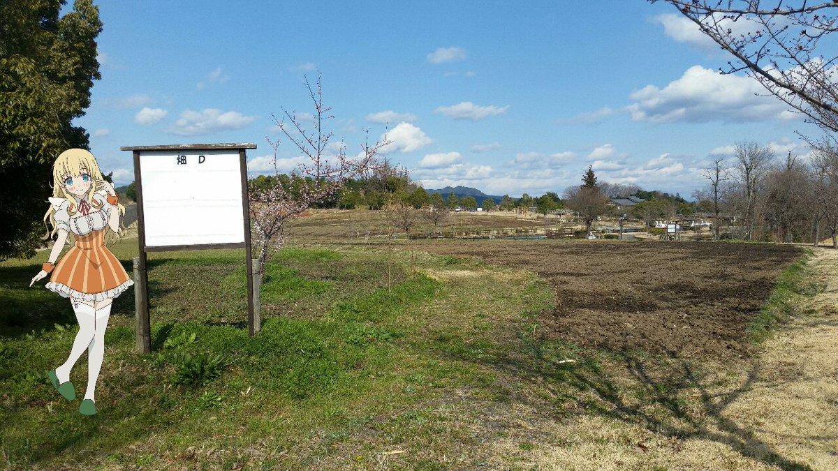 畑。:  #のうりん #butaimeguri