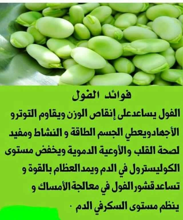 #فوائد الفول : #وصفه #وصفات #أكلات #مطبخ #يم_يمي #أكلاتي #مقبلات #طبق #حلى https://t.co/1SJ7cDR4am