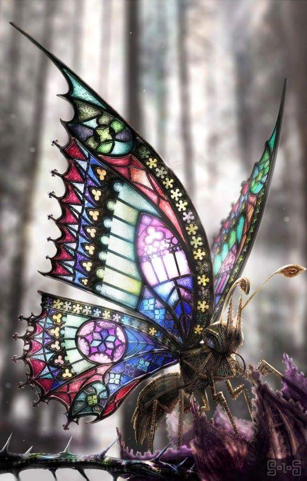 """""""The Gothic Butterfly by dahoffmann"""""""
