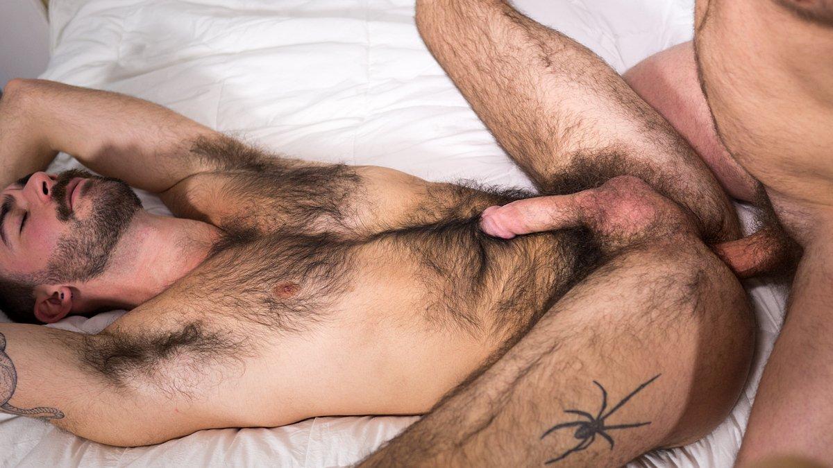 porno-gey-zrelie-medvedi