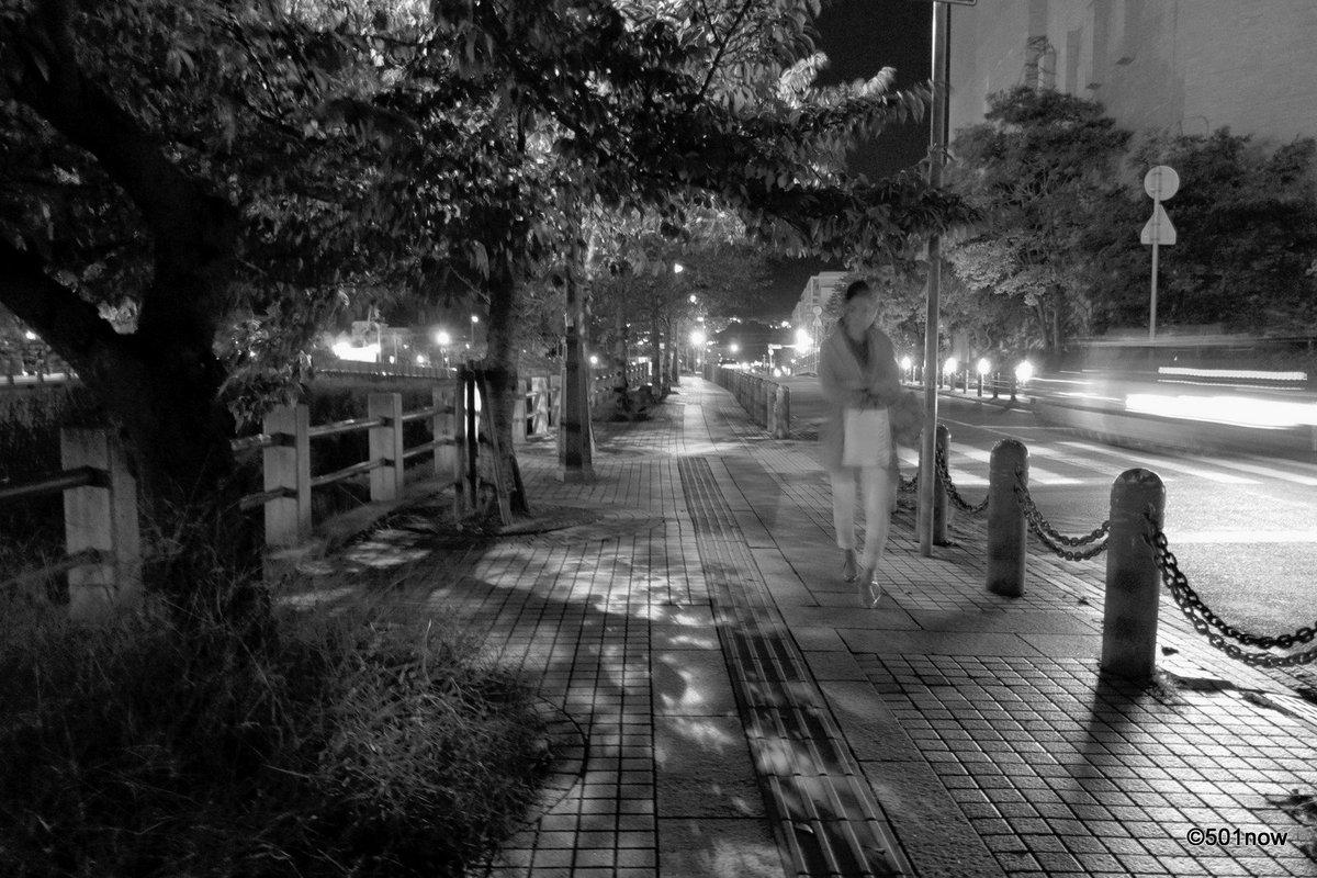 『夜の芦屋川』#芦屋 #芦屋川 #夜 #写真撮ってる人と繋がりたい#写真好きな人と繋がりたい#ファインダー越しの私の世界