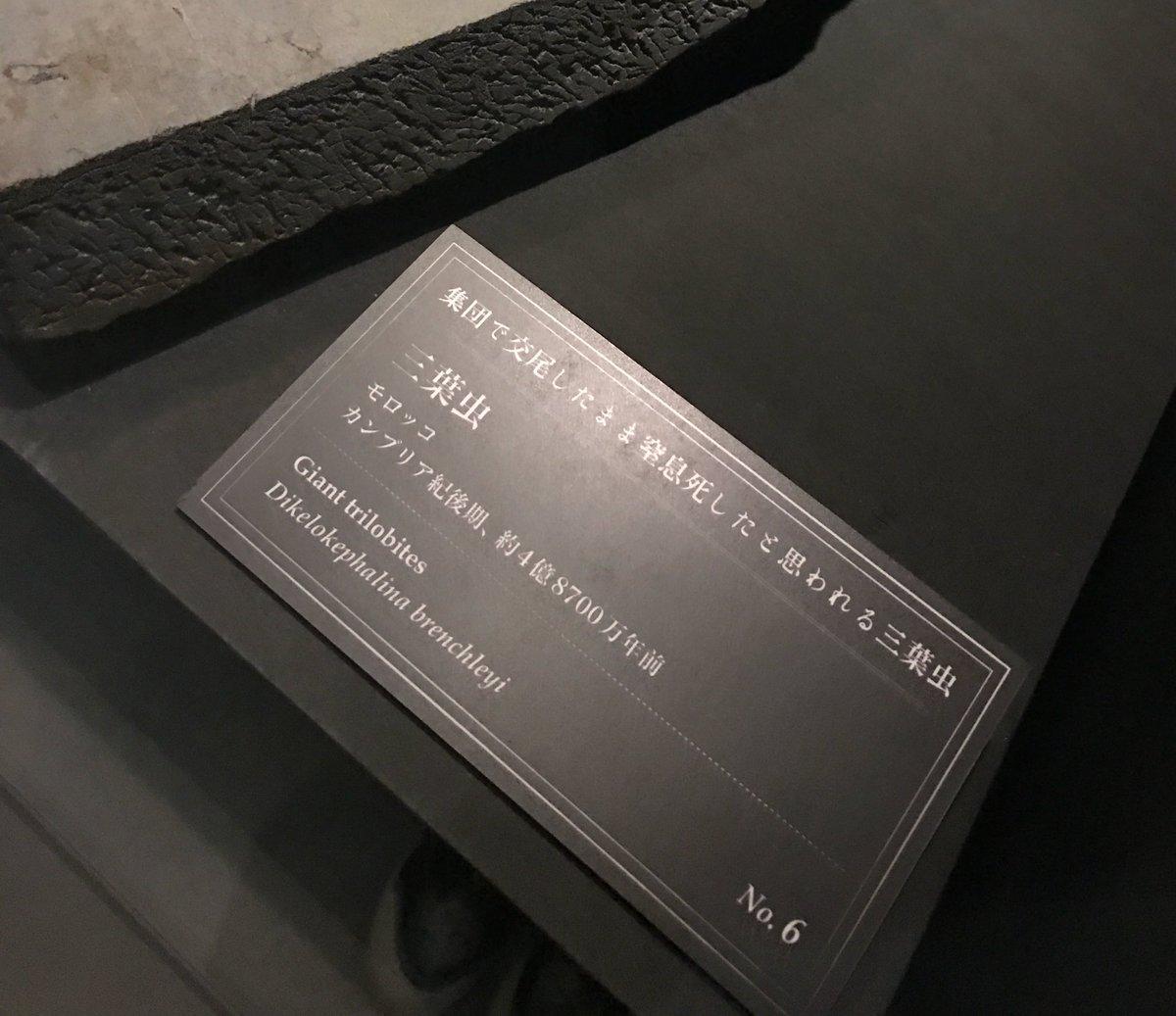 【君の名は。】宮水三葉は前前前世から可愛い 組紐65本目 [無断転載禁止]©2ch.netYouTube動画>1本 ->画像>216枚