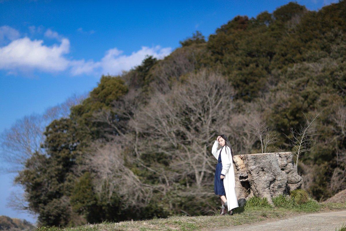 信長協奏曲に出てくる大きな木があるのですが、そこに行ってきました!残念ながら台風で倒れてしまったみたいです…有名な俳優さ