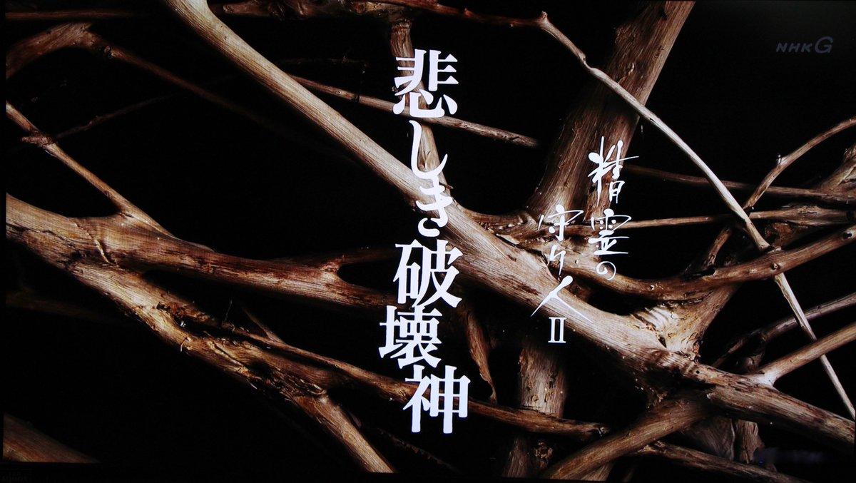 NHK「精霊の守り人」、本日出ました!最初の方に、バッチリと!見逃した人は再放送で観てね。