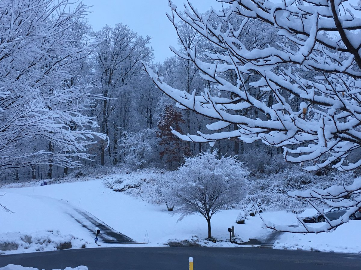 Got snow? Up to 2' has fallen overnight. Mostly on trees, grass, cars. Main roads wet. Some slushy spots. What's it like by you?