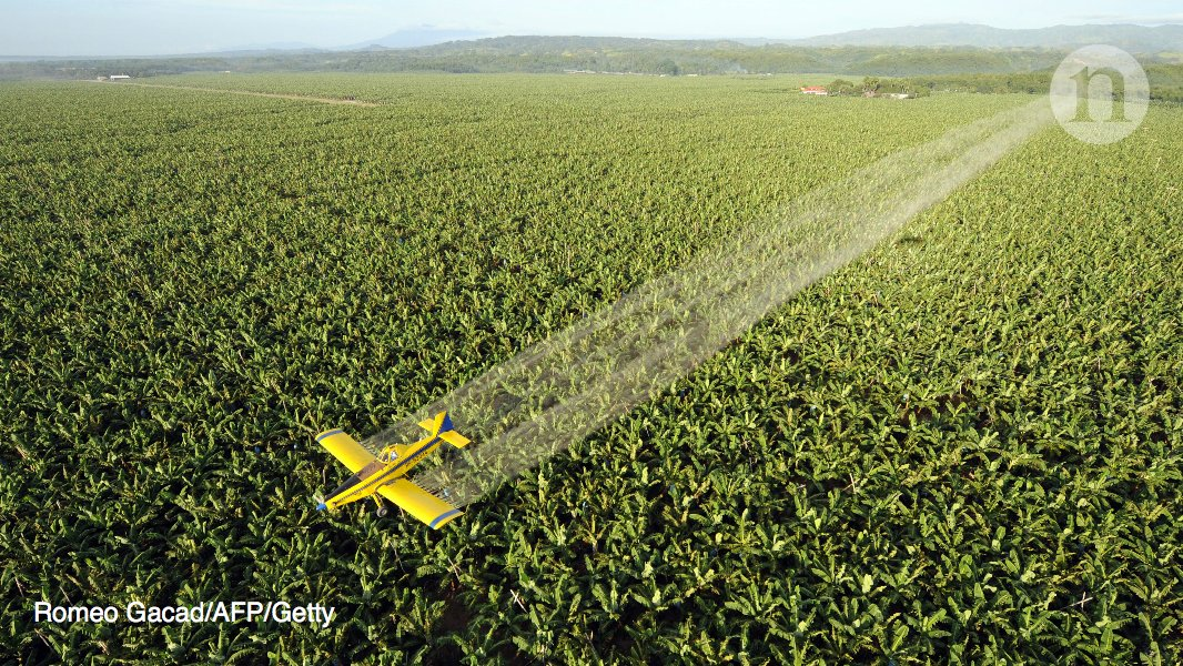 CRISPR, microbes and more are joining the battle against pesticide resistance: https://t.co/RBFptC7tR0 https://t.co/Z00BfpPNJB