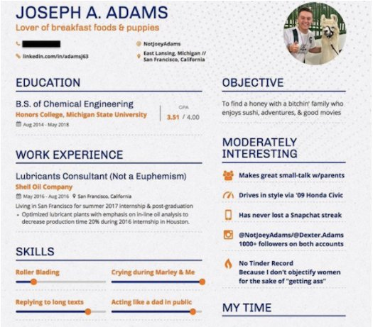 Guy Creatively Drafts Up A Dating Resume Thatll Tickle Your Funny Bone