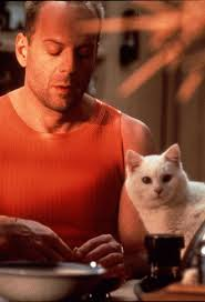 Happy Belated Birthday (March 19) to Bruce Willis, actor and