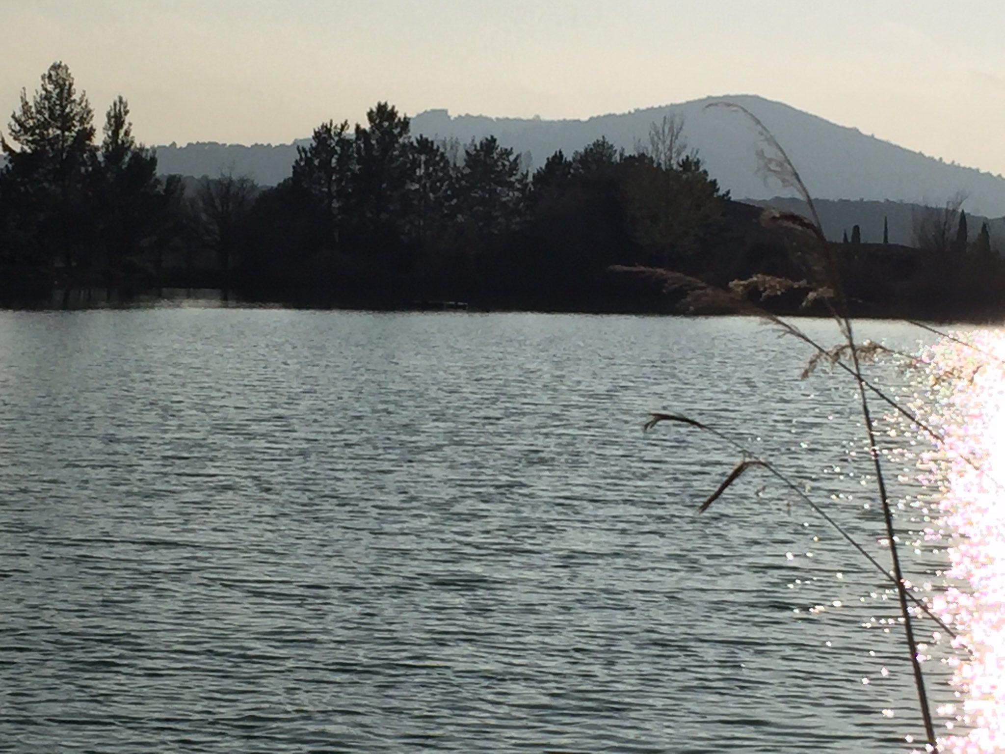 Lac Domaine de Pont Royal. https://t.co/v0seHxLZUo