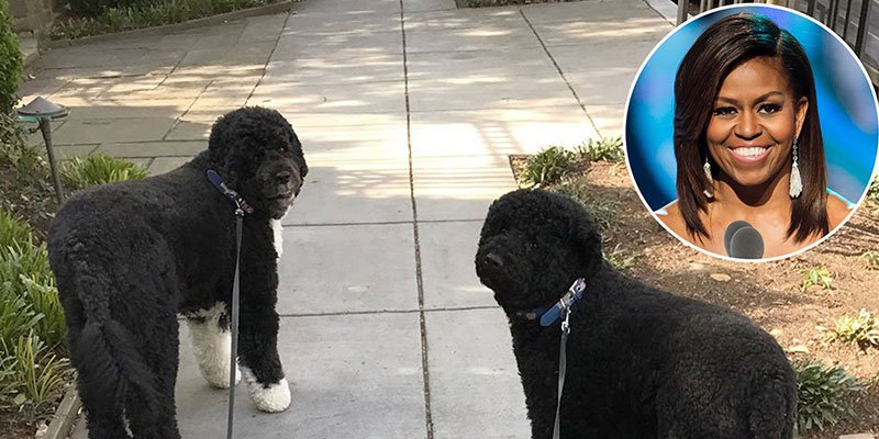 Michelle Obama celebrates first day of spring with Bo and Sunny