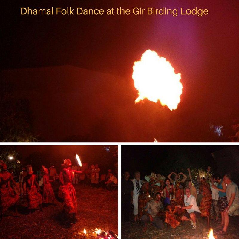 test Twitter Media - Witnessed an exciting performance of the Tribal folk dance #Dhamal. High on energy, action packed #Gir #folkdance #girbirdinglodge https://t.co/AhcVA4X5eA