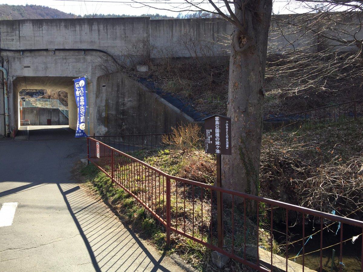 巡礼その4『雷鳥公園横の姥ヶ池』咲-saki-4巻102P〜103Pこのへん、閑静な住宅地すぎてあまりウロウロできません