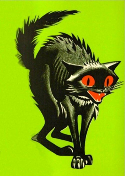 RT @bpumpkinhead: #Black #cat #love #horror 🐾 https://t.co/hOuDqDV8Q3