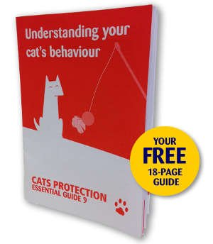 Free Cat Behaviour Guide - free freebies freestuff latestfreestuff
