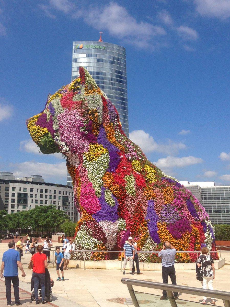 RT @MuseoGuggenheim: Siéntete de primavera! #Love #Art #Pickoftheday #Photo #Places #Bilbao https://t.co/1JwC8RiFD3